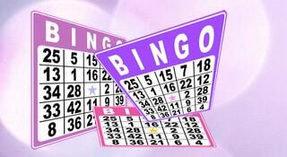 Bingo spel artikel
