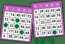 Bingo pris